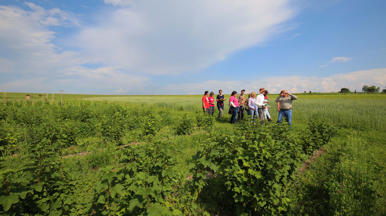 Posolstvo Svetového dňa cestovného ruchu: Rozvoj vidieckej turistiky