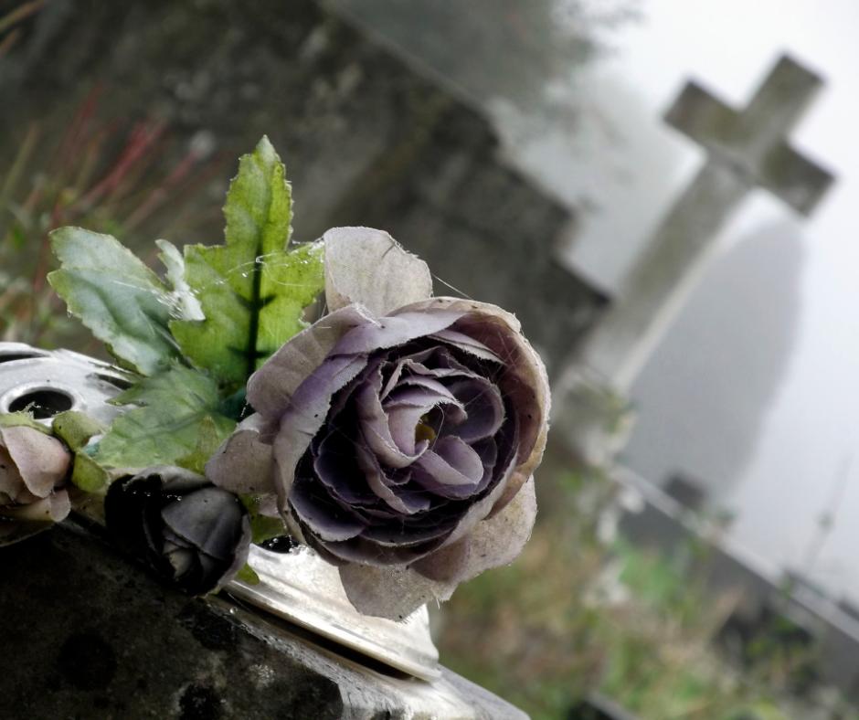 Časný a večný život: čo pomáha a čo vlastne škodí?